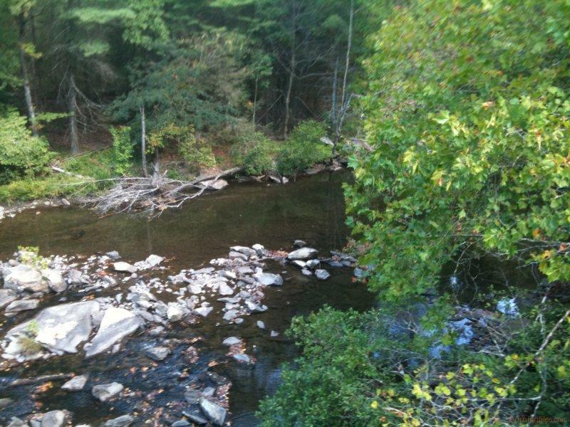 Downstream of Bald River Falls
