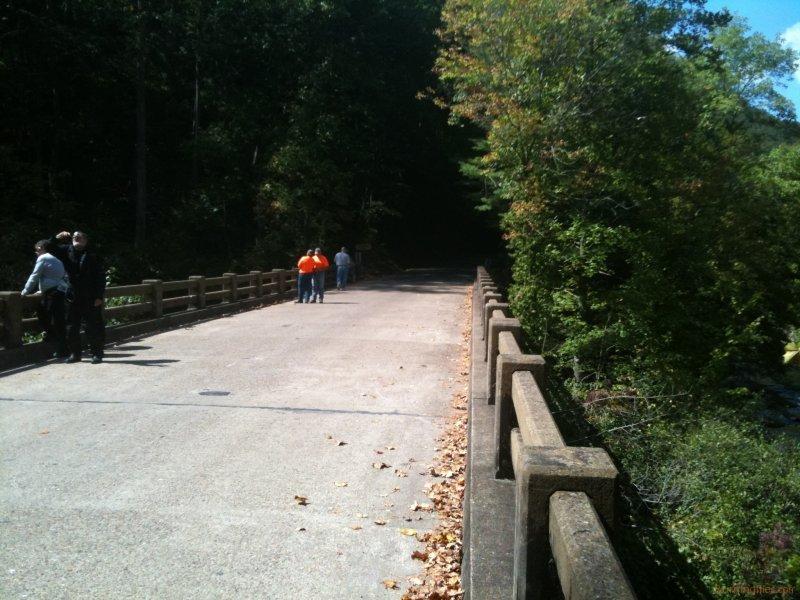 Bald River Falls bridge